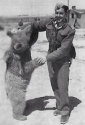 503810-brendan-foley-to-direct-soldier-bear-movie-on-wojtek-edinburgh-zoo-s-famous-resident-december-20-2.jpg